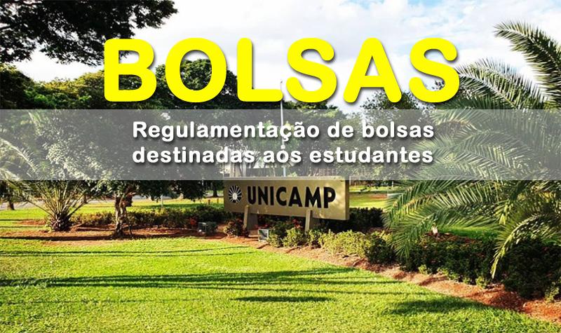 Consulte a regulamentação de bolsas concedidas aos estudantes da Unicamp