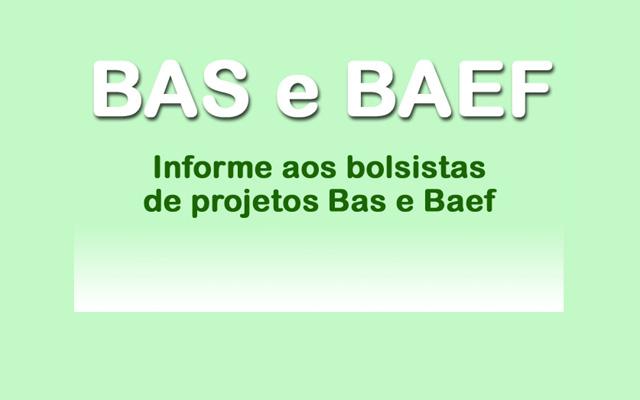 Informe aos bolsostas de projetos BAS e BAEF